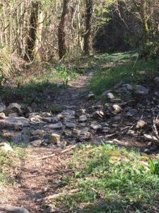regina vida castello ahrensperg stazione terapia forestale valli del natisone friuli italia - guado