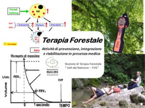 Forest-Therapy-FVG-2020