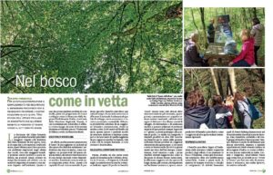 forest therapy station italy high altitude climate stay versus low altitude forest stay fev1 improvements